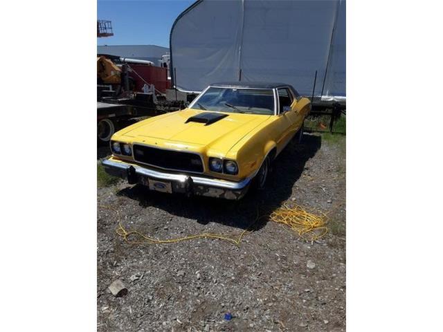 1973 Ford Gran Torino (CC-1485585) for sale in Cadillac, Michigan