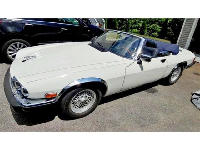 1989 Jaguar XJ12 (CC-1485617) for sale in Cadillac, Michigan