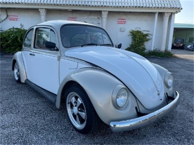 1965 Volkswagen Beetle (CC-1485933) for sale in Miami, Florida