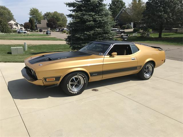 1973 Ford Mustang Mach 1 (CC-1486033) for sale in Otsego , Michigan