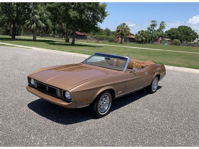 1973 Ford Mustang (CC-1486812) for sale in Clearwater, Florida