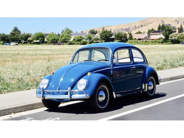 1965 Volkswagen Beetle (CC-1486921) for sale in Reno, Nevada