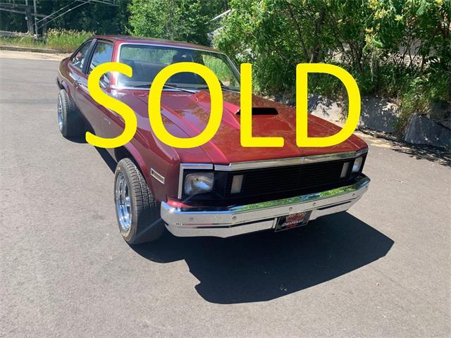 1979 Chevrolet Nova (CC-1487169) for sale in Annandale, Minnesota