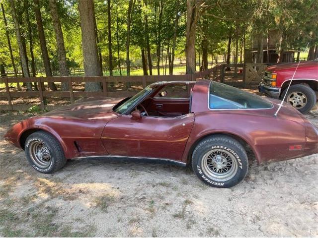 1978 Chevrolet Corvette (CC-1480737) for sale in Cadillac, Michigan