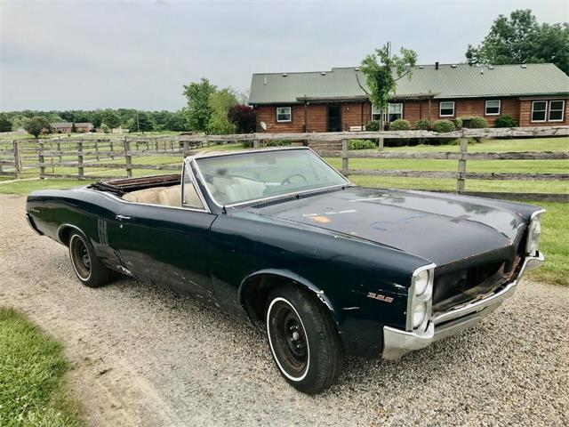 1967 Pontiac LeMans (CC-1487951) for sale in Knightstown, Indiana