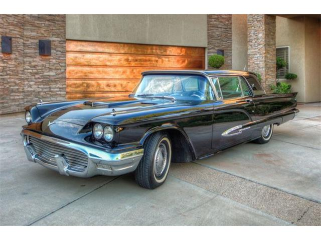 1959 Ford Thunderbird (CC-1488106) for sale in Cadillac, Michigan
