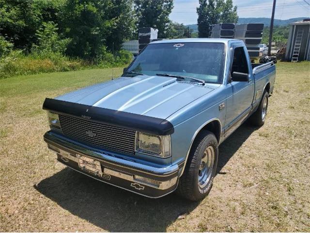 1985 Chevrolet S10 (CC-1488845) for sale in Cadillac, Michigan