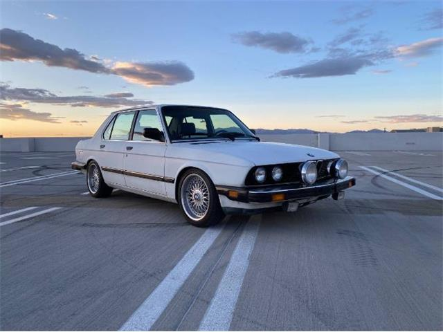 1988 BMW 5 Series (CC-1488902) for sale in Cadillac, Michigan