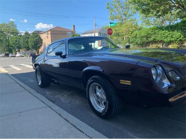1979 Chevrolet Camaro (CC-1491590) for sale in Cadillac, Michigan