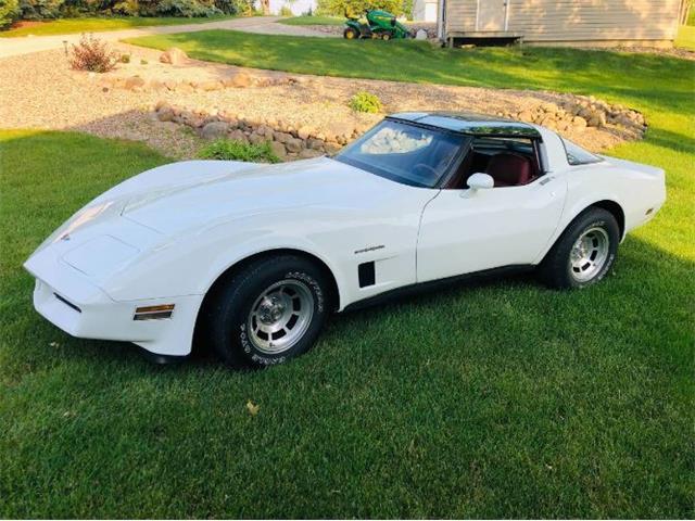 1982 Chevrolet Corvette (CC-1493197) for sale in Cadillac, Michigan