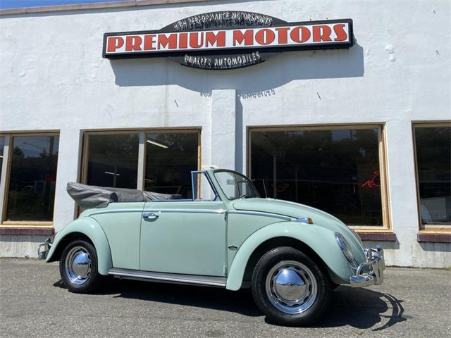 1965 Volkswagen Beetle (CC-1493290) for sale in Tocoma, Washington