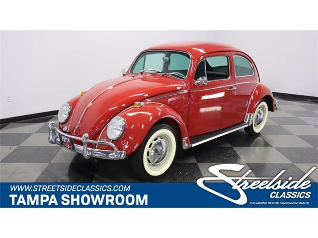 1967 Volkswagen Beetle (CC-1493471) for sale in Lutz, Florida