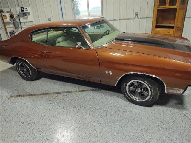 1971 Chevrolet Chevelle (CC-1504941) for sale in Cadillac, Michigan