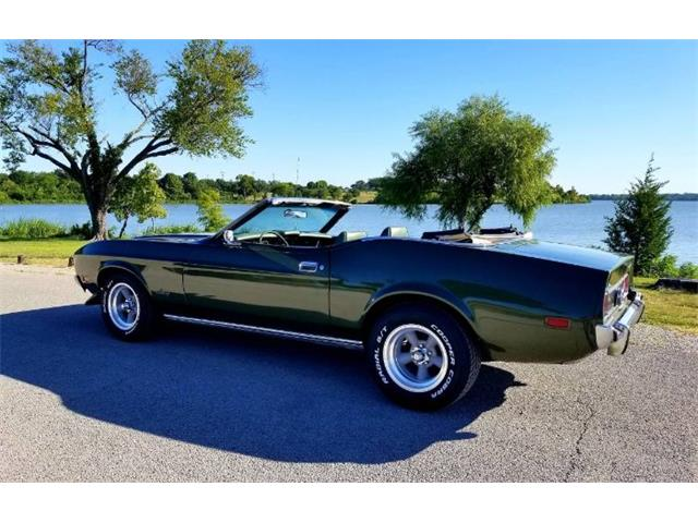 1973 Ford Mustang (CC-1506532) for sale in Cadillac, Michigan