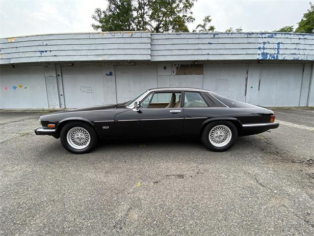 1991 Jaguar XJS (CC-1507158) for sale in HIGHLAND PARK, New Jersey