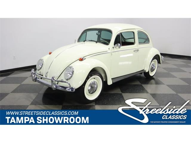 1970 Volkswagen Beetle (CC-1509104) for sale in Lutz, Florida