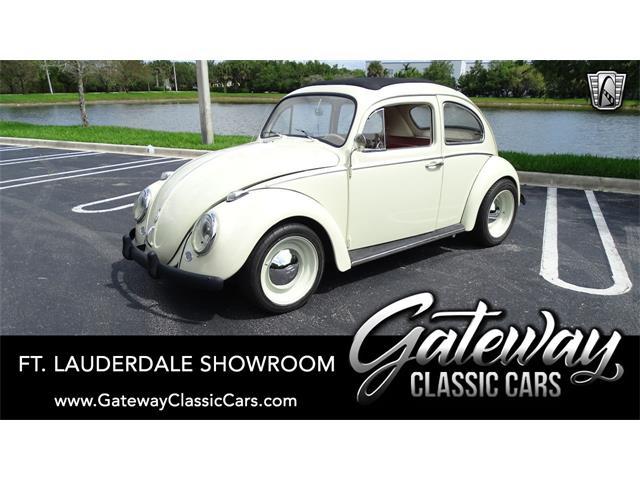 1960 Volkswagen Beetle (CC-1509202) for sale in O'Fallon, Illinois