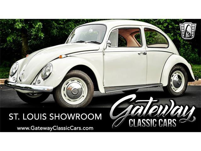 1966 Volkswagen Beetle (CC-1512021) for sale in O'Fallon, Illinois