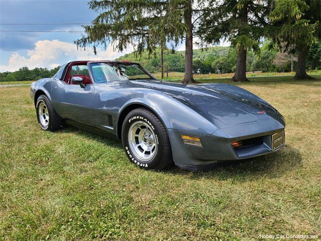 1981 Chevrolet Corvette (CC-1512061) for sale in martinsburg, Pennsylvania