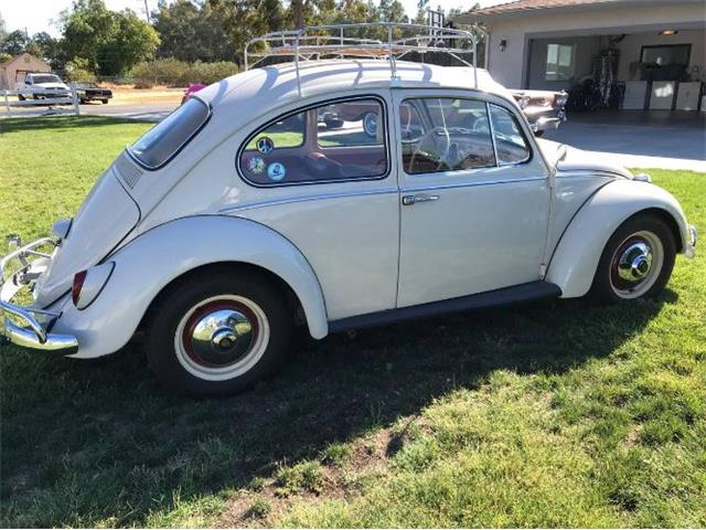 1965 Volkswagen Beetle (CC-1512267) for sale in Cadillac, Michigan