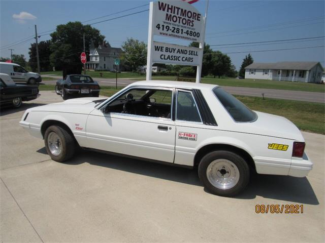 1979 Ford Mustang (CC-1512446) for sale in Ashland, Ohio