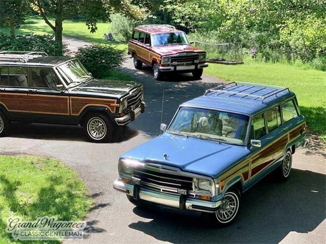 1991 Jeep Grand Wagoneer (CC-1510302) for sale in BEMUS POINT, New York