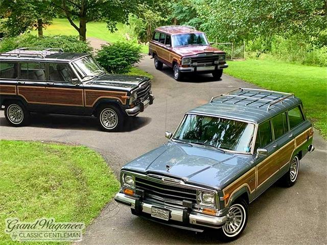 1991 Jeep Grand Wagoneer (CC-1510304) for sale in BEMUS POINT, New York