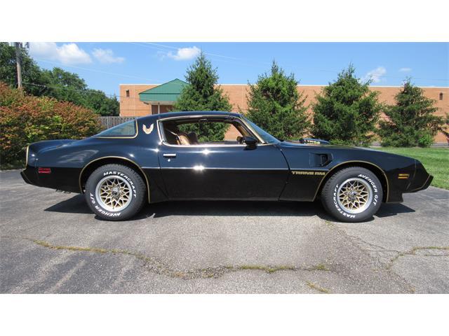 1981 Pontiac Firebird Trans Am (CC-1514777) for sale in MILFORD, Ohio