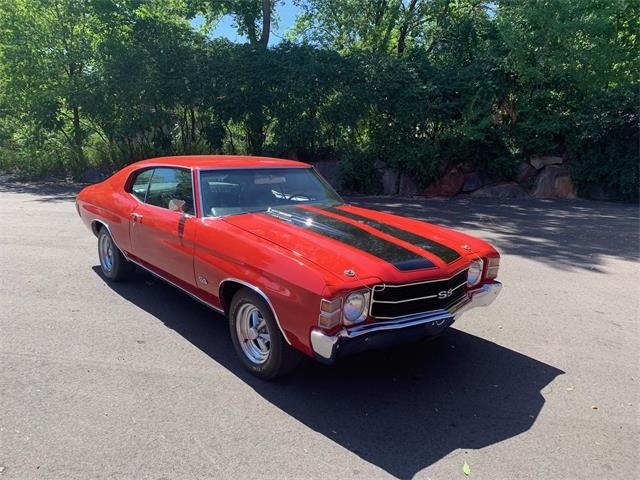 1971 Chevrolet Chevelle SS (CC-1514873) for sale in Annandale, Minnesota