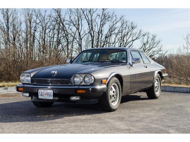 1986 Jaguar XJ (CC-1515048) for sale in St Louis, Missouri