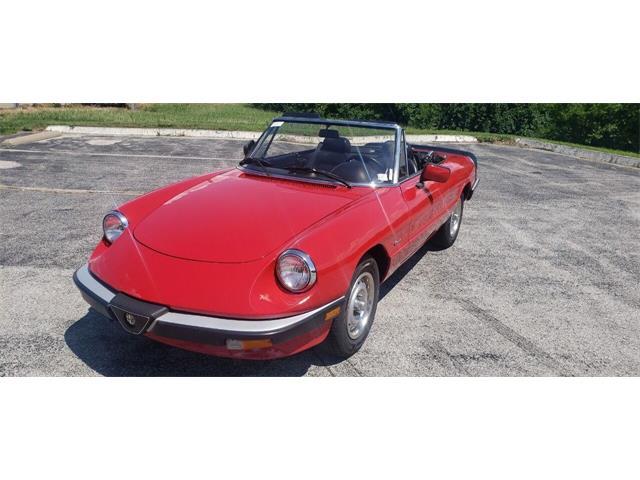 1986 Alfa Romeo Spider (CC-1515059) for sale in St Louis, Missouri