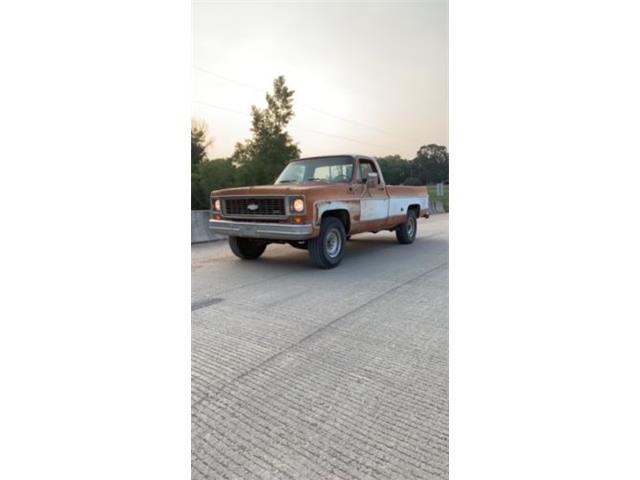 1973 Chevrolet Cheyenne (CC-1515230) for sale in Cadillac, Michigan