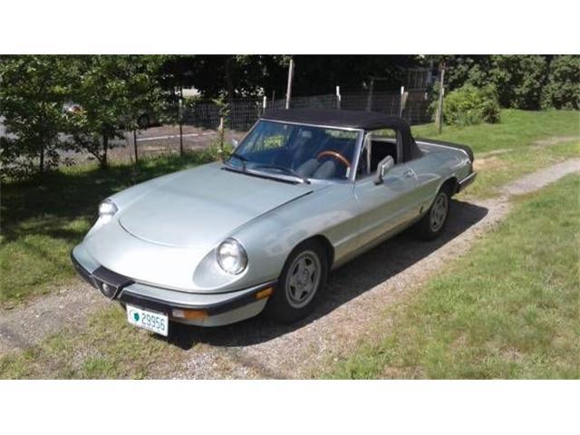 1983 Alfa Romeo Spider (CC-1515667) for sale in Cadillac, Michigan