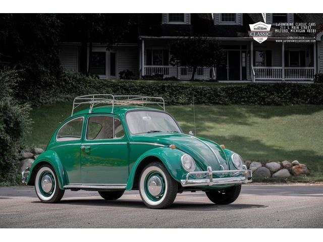 1966 Volkswagen Beetle (CC-1515708) for sale in Milford, Michigan