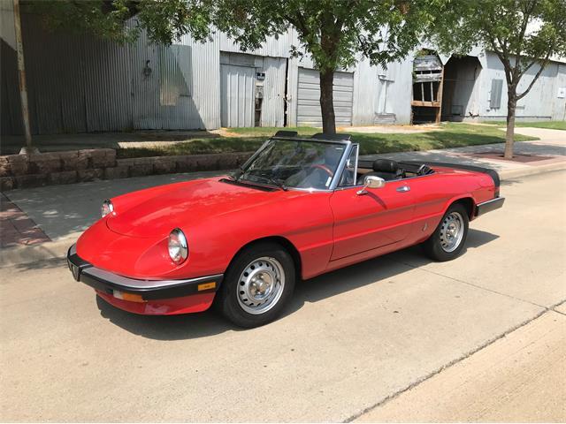 1985 Alfa Romeo Spider (CC-1516293) for sale in Rowlett, Texas