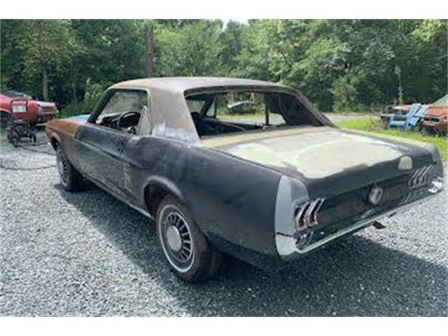 1967 Ford Mustang (CC-1516441) for sale in Cadillac, Michigan