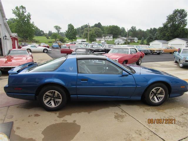 1991 Pontiac Firebird (CC-1516909) for sale in Ashland, Ohio
