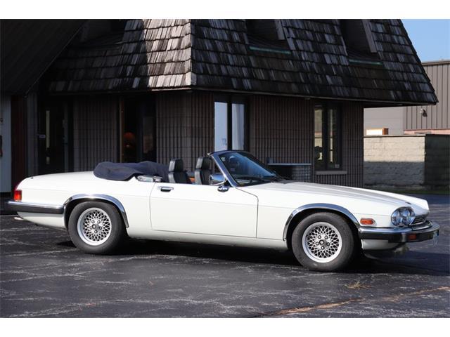 1990 Jaguar XJS (CC-1518501) for sale in Alsip, Illinois