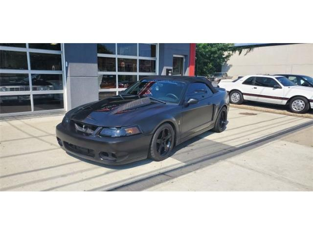 2003 Ford Mustang (CC-1519360) for sale in Cadillac, Michigan