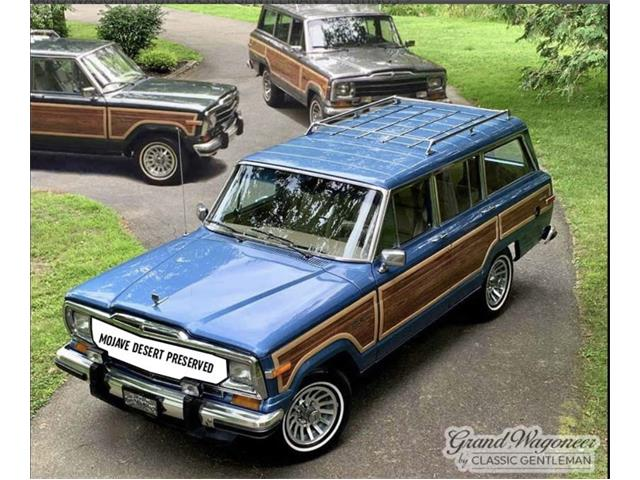 1984 Jeep Grand Wagoneer (CC-1519480) for sale in BEMUS POINT, New York