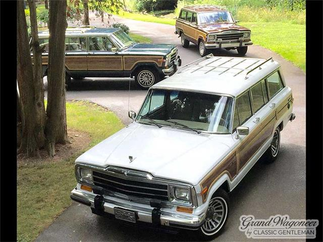 1987 Jeep Grand Wagoneer (CC-1519481) for sale in BEMUS POINT, New York