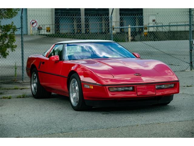 1990 Chevrolet Corvette (CC-1521228) for sale in Ridgeland, South Carolina