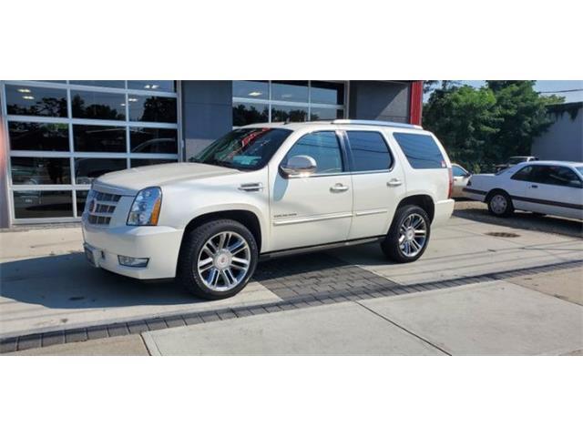 2014 Cadillac Escalade (CC-1521622) for sale in Cadillac, Michigan