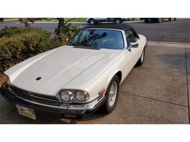 1991 Jaguar XJS (CC-1521663) for sale in Eagle Point, Oregon