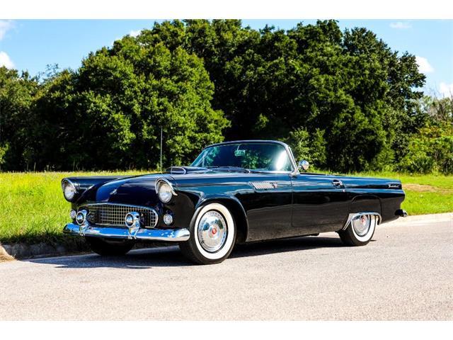 1955 Ford Thunderbird (CC-1522081) for sale in Winter Garden, Florida