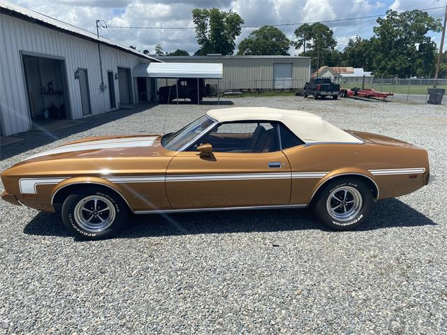 1973 Ford Mustang (CC-1522201) for sale in Nashville , Georgia