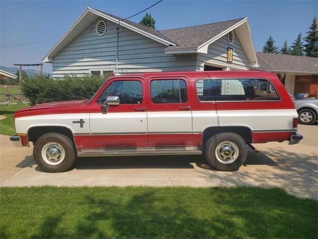 1985 Chevrolet Suburban (CC-1522562) for sale in Cadillac, Michigan