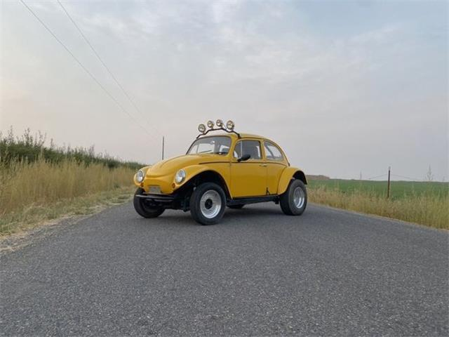 1966 Volkswagen Beetle (CC-1523633) for sale in Cadillac, Michigan