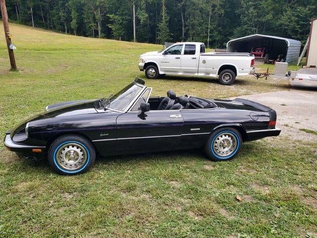 1986 Alfa Romeo Spider (CC-1523690) for sale in Cadillac, Michigan