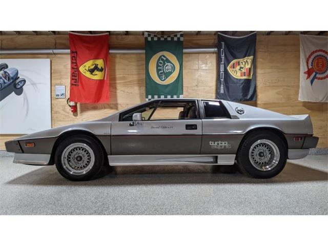 1983 Lotus Esprit (CC-1523752) for sale in Cadillac, Michigan